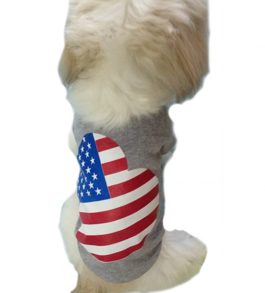 US flag with love pet